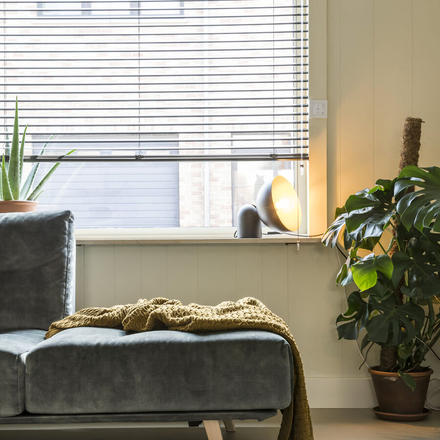 Plantes vertes et stores vénitiens heytens
